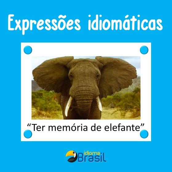 Ter memória de elefante